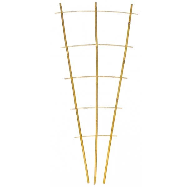 Bambus Rankhilfe Typ S3
